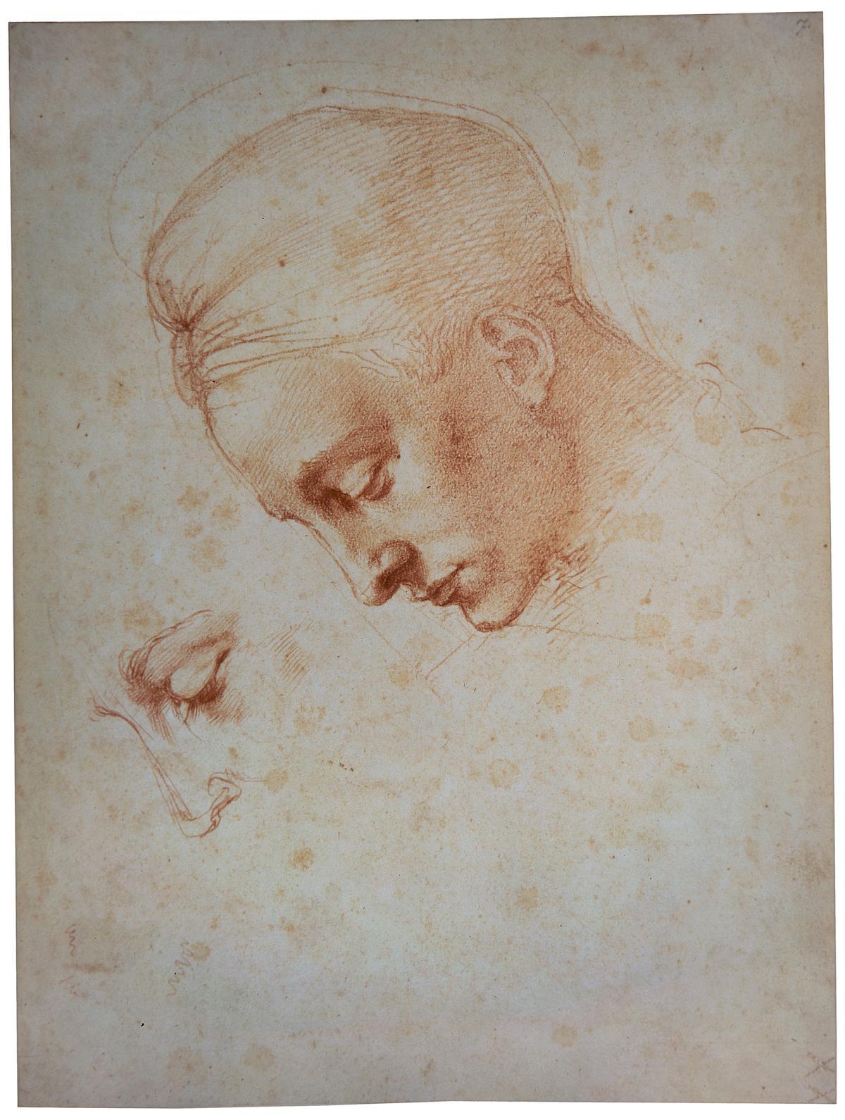 Michelangelo « The Albertina Museum Vienna